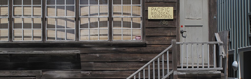 Cannery Row Walking Tours | Monterey, California